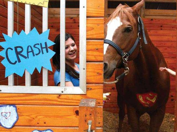 Horse WEB 1